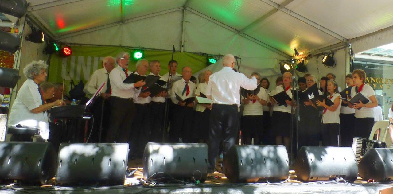 The Dante Musica Viva Choir performing on one of the festival stages