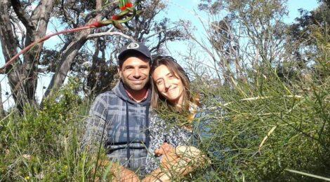 QUI DOVE CI PORTANO LE ORCHIDEEE UN VIAGGIO DI RICERCA DALLE ALPI ALL'AUSTRALIA